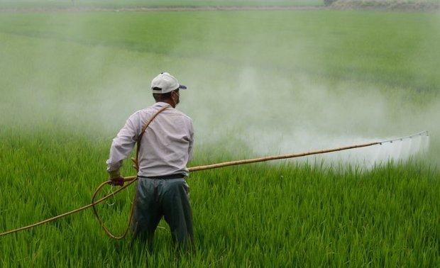 Exportações de agronegócio batem recorde de US$12 bilhões em junho
