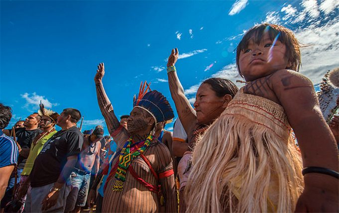 Terras Indígenas da Amazônia Legal têm redução de 23,3% no desmatamento, entre 2019 e 2020